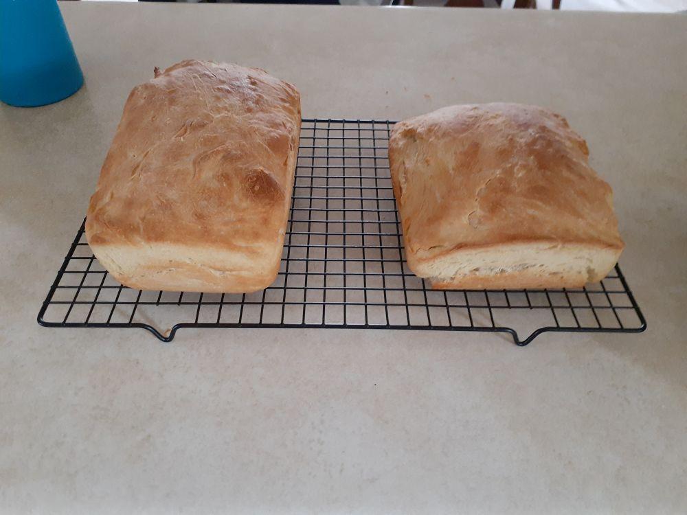 covid bread 001.jpg