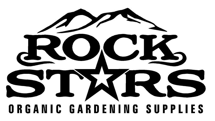 rock stars 2.jpg